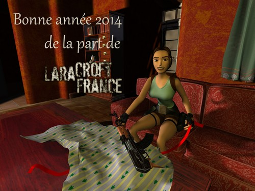 News_Bonne_annee_2014 (500)